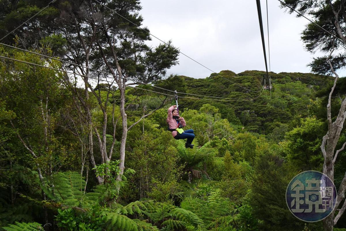 高空滑索一共有3段路線,每段長約200公尺。