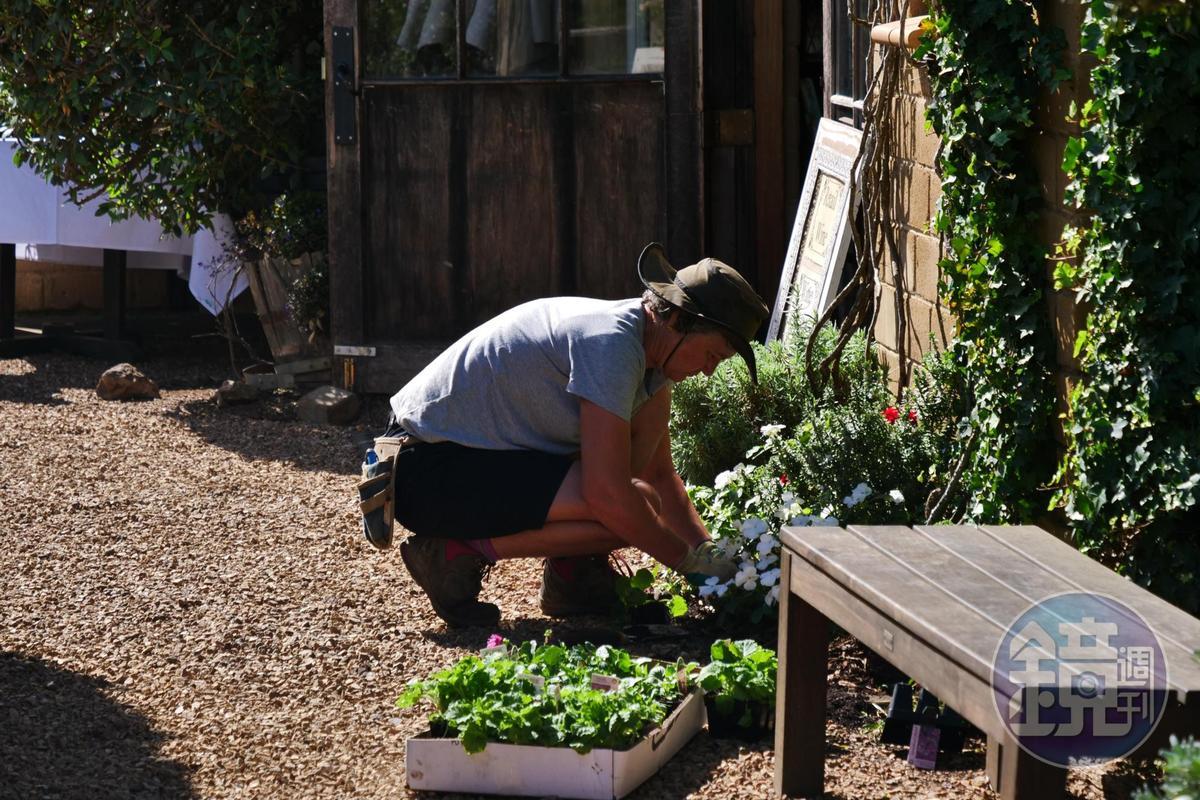 店家自己種植料理所需香料和食用花卉。