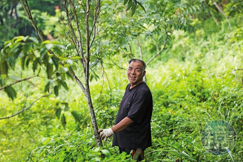 魯凱族人宋文生出身屏東縣霧台鄉神山部落,復育台灣原生種樹林20餘年。