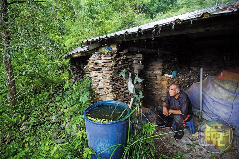 宋文生在山上搭建工寮,照顧樹木時,他晚上就在這裡搭帳篷。