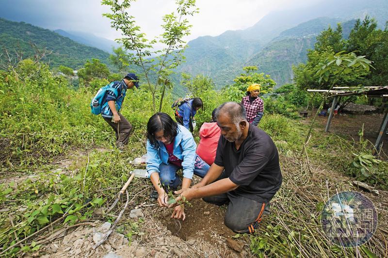 發起群眾募資、一人一樹認養計畫,宋文生希望藉此帶動更多人知道山林的重要。