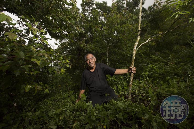 顧好獵場是原住民傳統社會對獵人的基本要求。