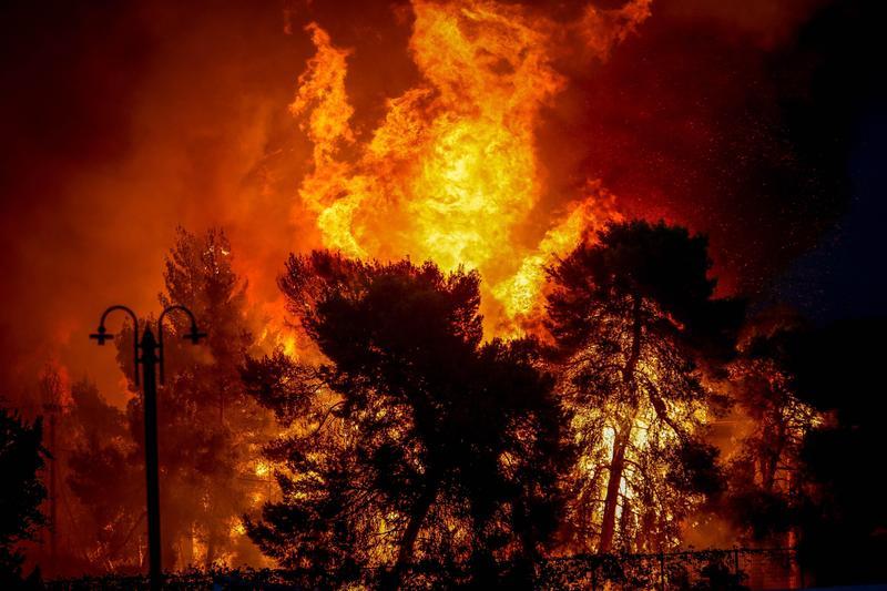 全球各地熱浪頻傳,天乾物燥,森林野火肆虐。希臘的大火更釀成慘重災情。(東方IC)