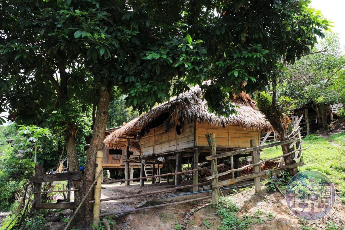當地人居住在高腳屋裡,即便雨季來臨,屋內依舊涼爽舒適。