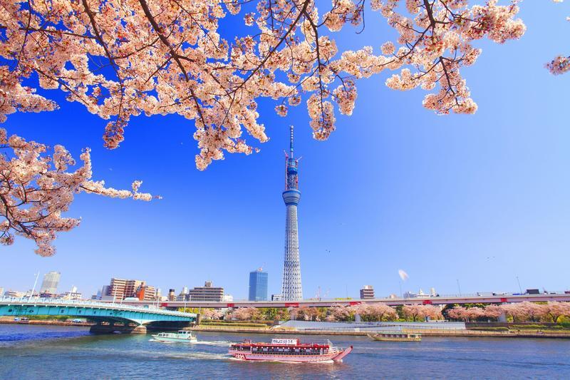 去年台灣赴日旅客人數456.4萬人次創下歷史新高,是台灣許多旅客想一去再去的景點。(東方IC)