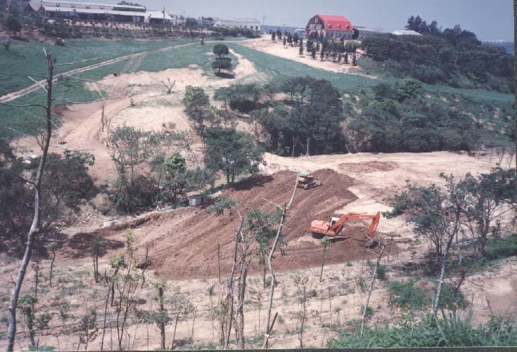 飛牛牧場為面山背海的丘陵地,花費10餘年開發整地,才能形塑今日地景。(飛牛牧場提供)