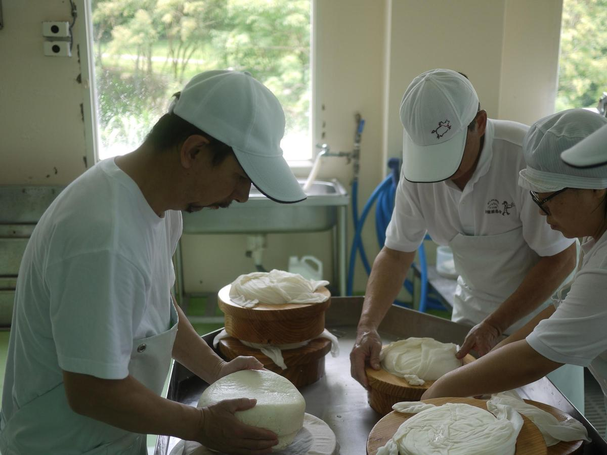 飛牛牧場的起司從凝乳、切割、排除乳清等步驟皆以手工攪拌,避免破壞起司結構。(飛牛牧場提供)