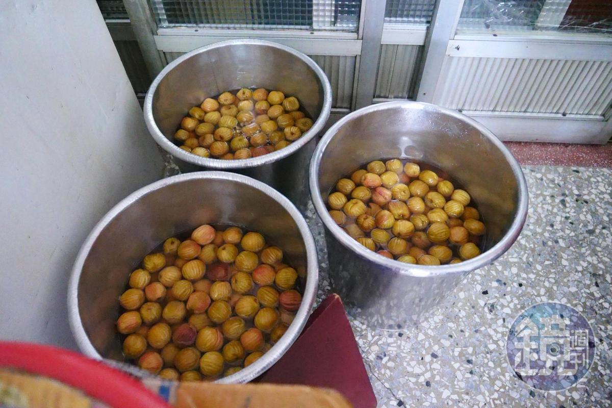 醃桃子是季節限定,須預訂。