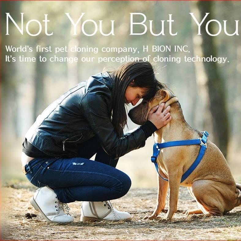 韓國秀岩生物科技在網頁的介紹,號稱是全球第一家複製狗公司,並宣稱「改變對複製科技認知的時候到了」。(Facebook/Notyoubutyou)