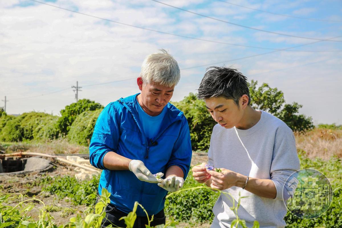 「MUME」主廚林泉(右)勤跑食材產地,他認為透過種植者林中智(左) 的分享能更認識食材的變化和風味。