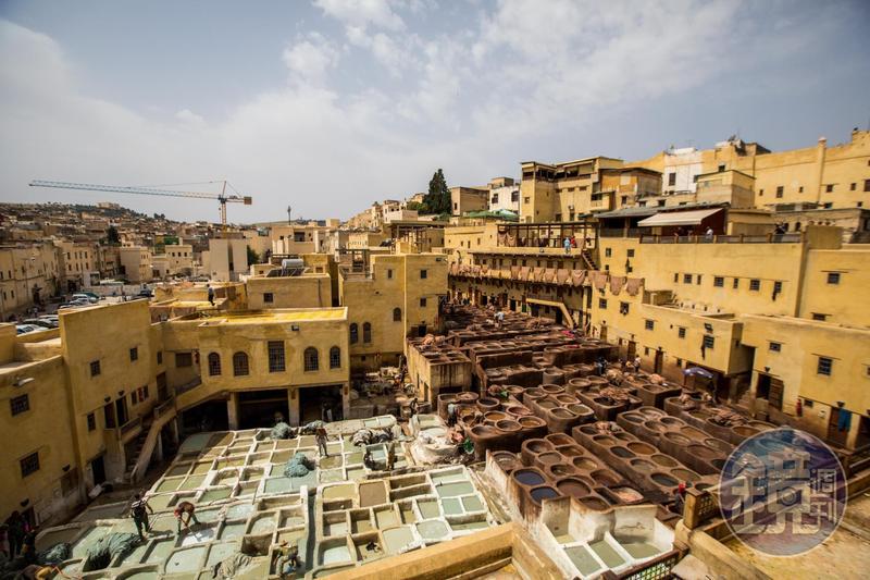 非斯古城的皮革染坊,是最不能錯過的景象。