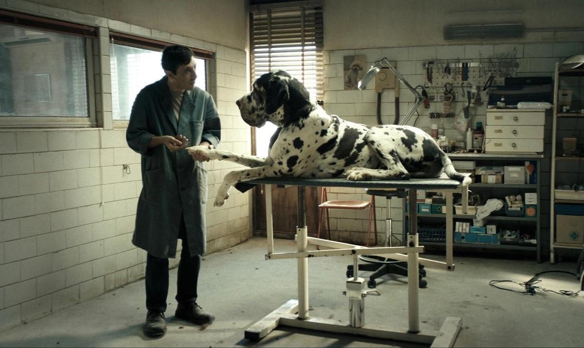 《狗奴人生》將男主角馬切洛豐特推上坎城影帝,溫順的寵物美容師竟然化身成了冷血復仇者。(金馬執委會提供)