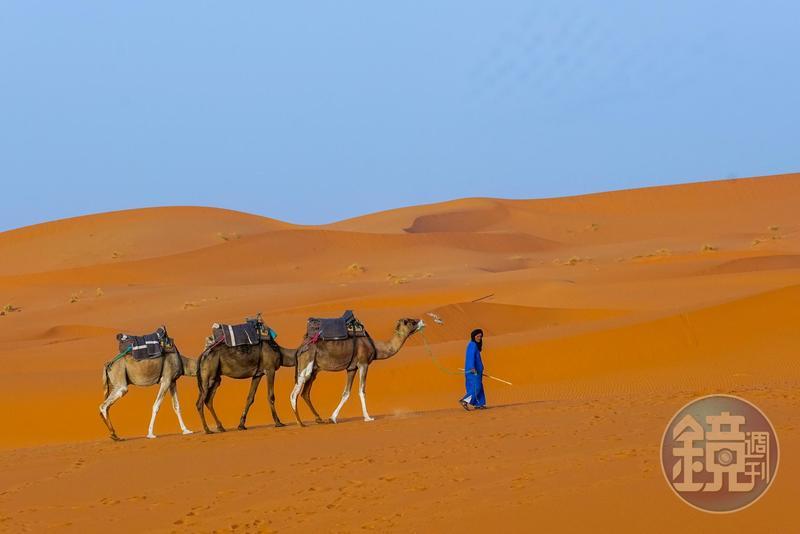進入撒哈拉沙漠,在沙丘上騎乘駱駝,是許多旅客會進行的體驗。