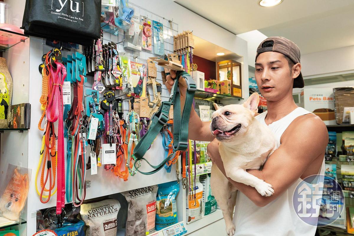 鄭凱的毛孩努努也是好友寵物店的忠實客戶。
