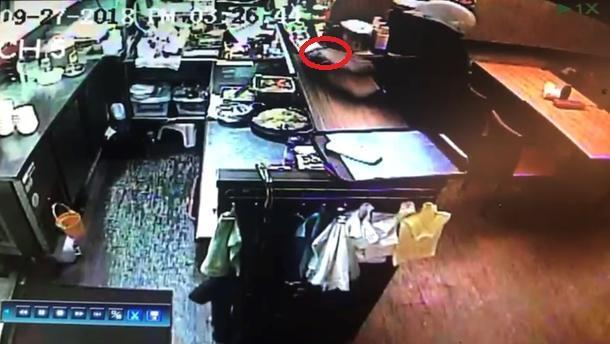 初姓嫌犯在韓料料理店趁機偷走老闆娘手機。(翻攝畫面)