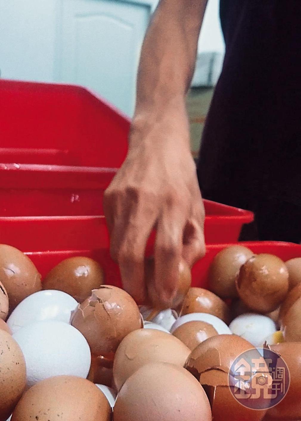 回收破蛋:爆料者提供義進金公司回收破損雞蛋畫面,員工敲破蛋殼加工成液體蛋。