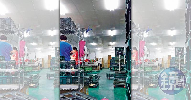 義進金食品公司涉嫌為即期蛋品改標,圖為去年仁武洗選廠內部運作情形。