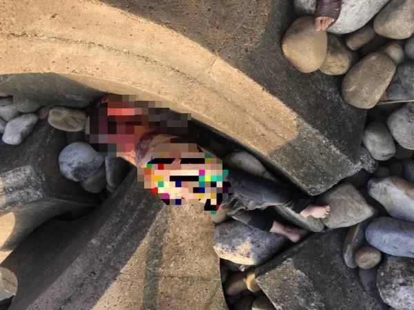 妙齡女僅著內衣褲陳屍通霄新埔海邊,警方呼籲民眾協助指認。(警方提供)