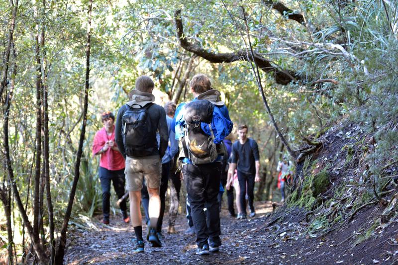 許多遊客慕名到紐西蘭徒步健行,但受傷人數也逐年攀升。(東方IC)