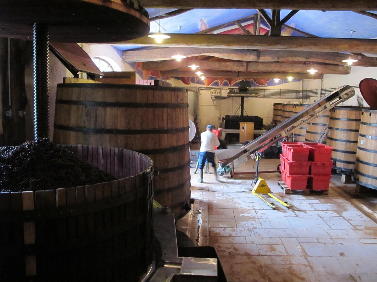 自然派釀酒師會盡量不使用添加物,讓葡萄酒展現原產風土味道。(林裕森提供)