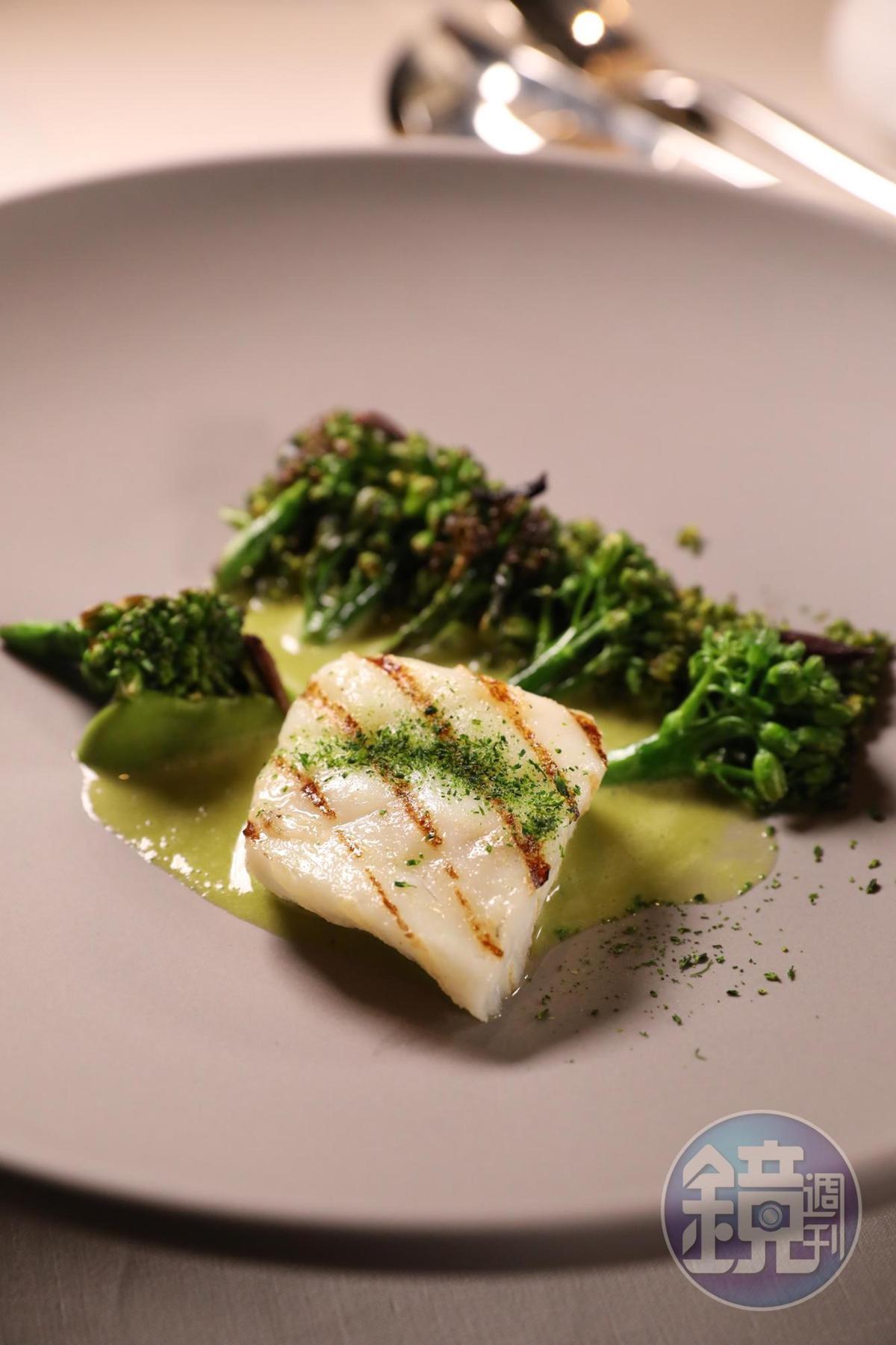 「活締手線捕海鱸、西蘭花、橄欖、鱸魚汁」用的是海釣鱸魚,吃得出鮮度。(澳門幣708元/份,約NT$2,706)