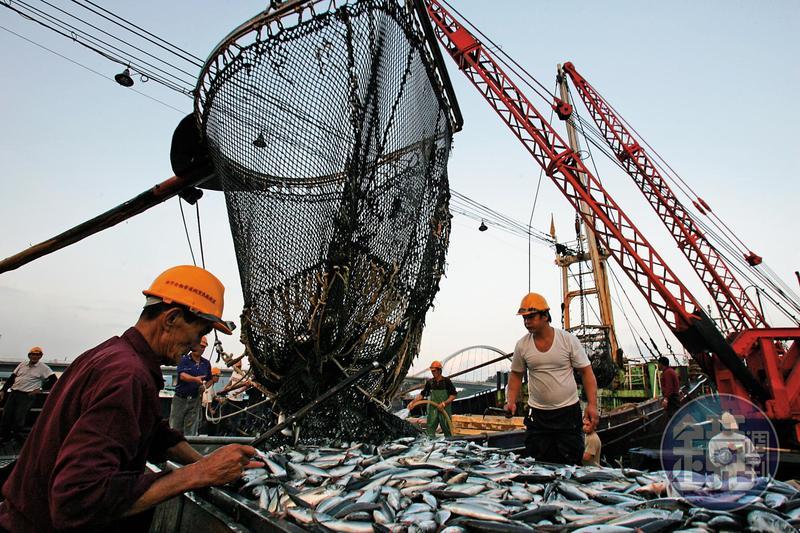 歐盟發給台灣黃牌已2年餘,政府為想辦法拿掉黃牌,修法並開罰,卻引起漁民反彈。