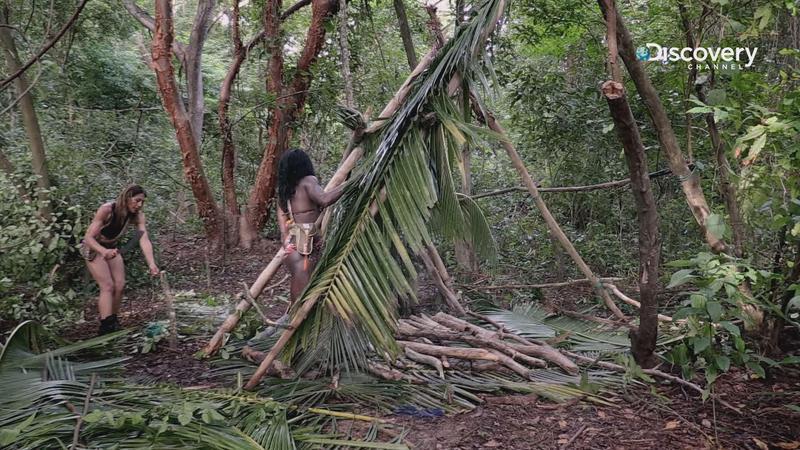 原本互不相干的兩組人馬,被迫在荒島上一起求生,協議一同蓋好遮風避雨的場所。(Discovery頻道提供)