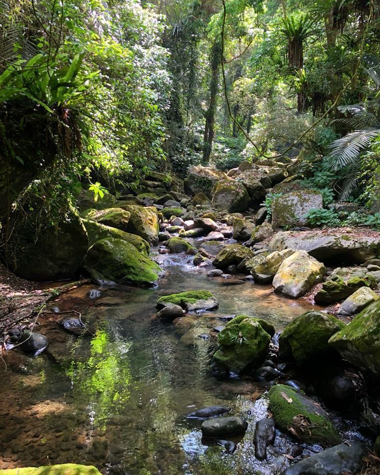 Wind家鄉雲霧部落的秘境水源,與亞伯樂釀酒泉源相隔千里又遙遠呼應。