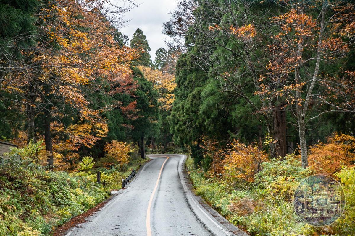 「立山高原巴士」近1小時車程,窗外景色再次從冬天換成秋景。