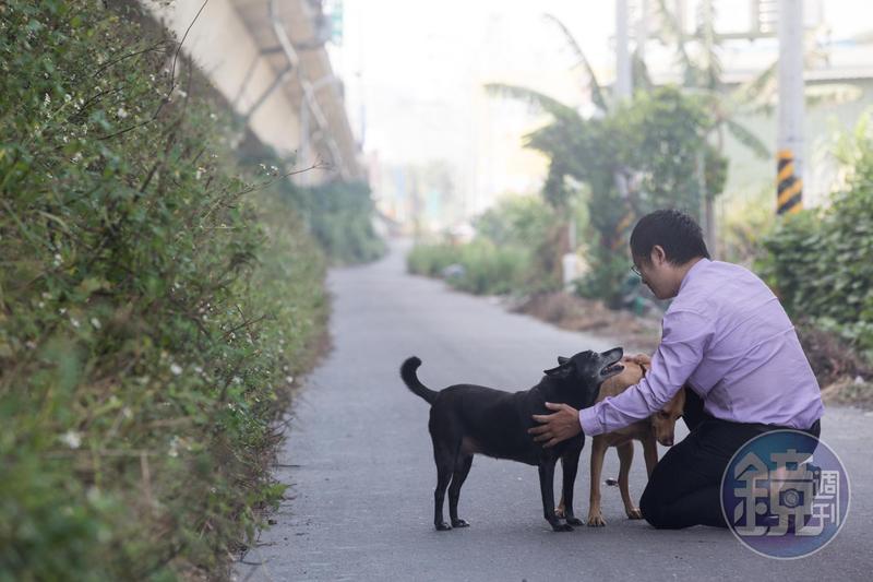 每天下班遛狗是翁建原的日常,他認為,研究股票不需花時間。