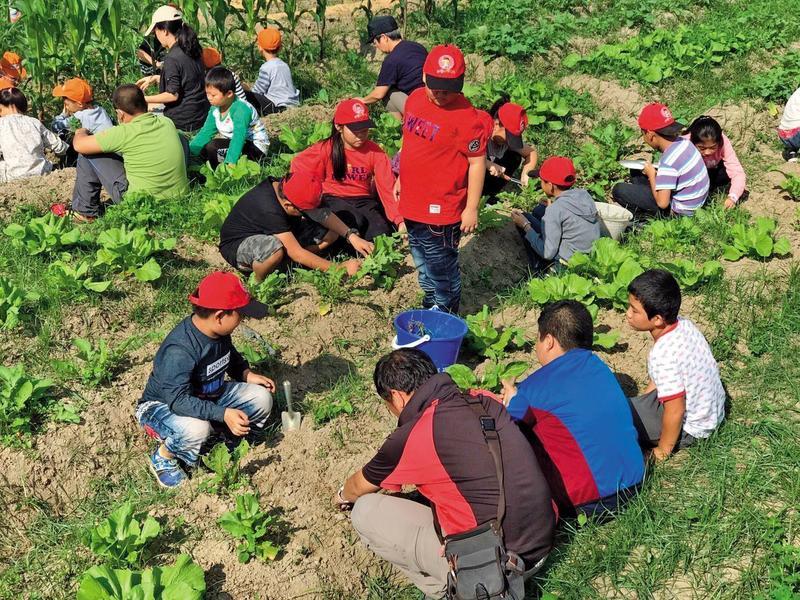 小學生學習耕種,同時由田鄉青農與學校合作進行自然科學及地方文史教育。(台灣好基金會提供)