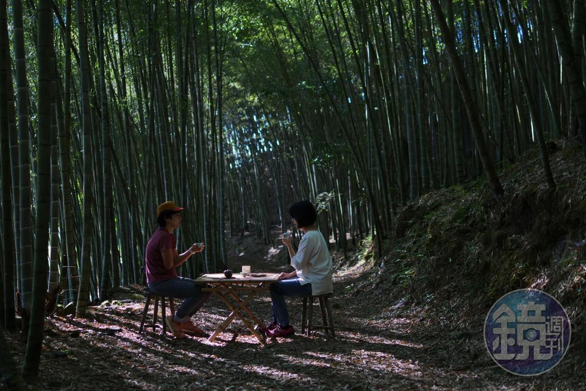 在竹林品茶可不是所有人都有的待遇,要看民宿主人的心情。