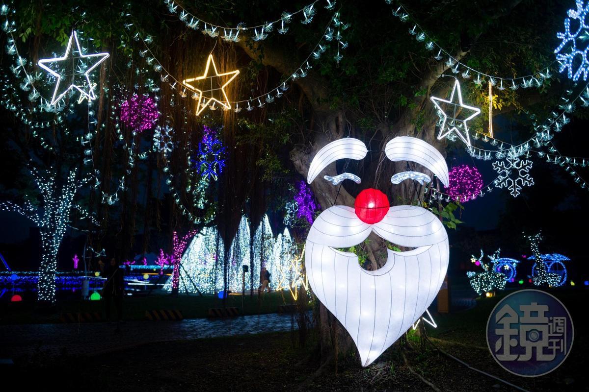 平日公園裡的老榕樹,夜晚化身為耶誕老人。