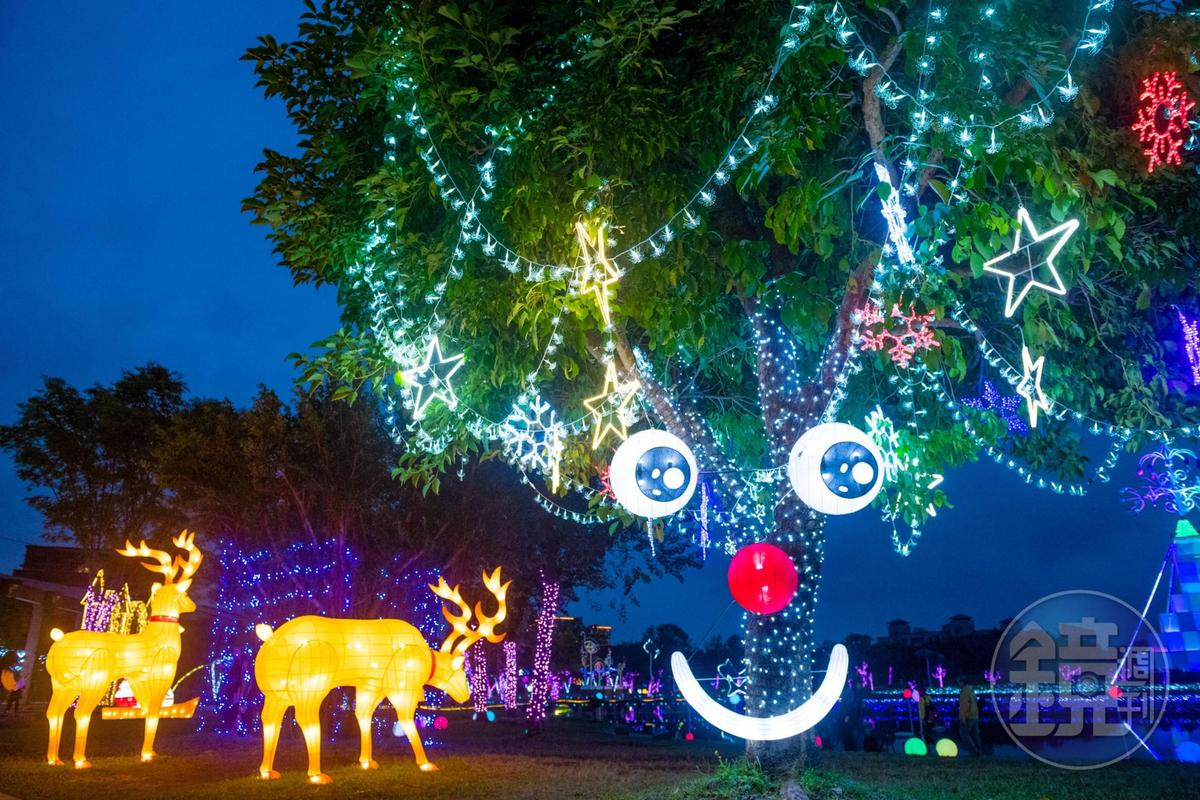 晚上浮現親切微笑的公園老樹。
