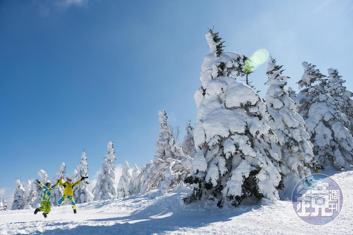 長野雖是滑雪天堂,但就算不滑雪,仍有許多雪上體驗。