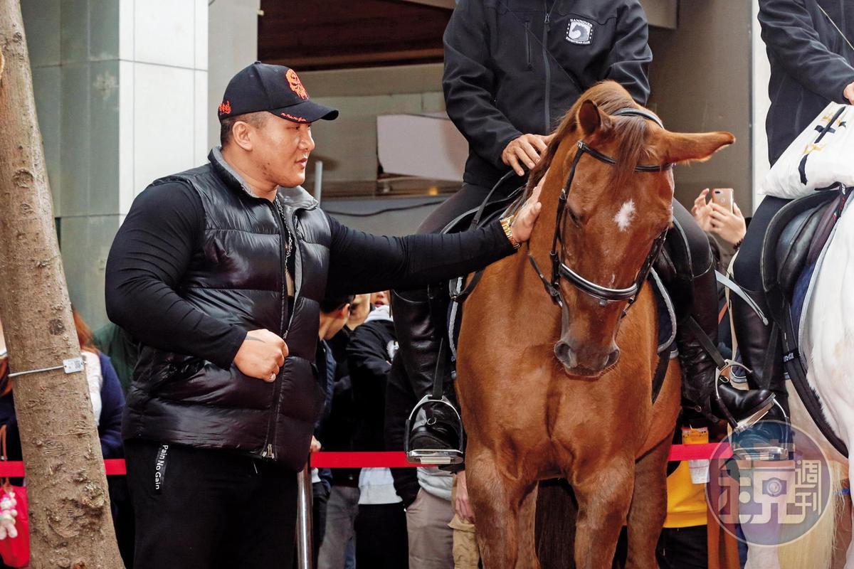 誰能讓館長的拳頭硬了?就是這匹馬!館長說自己是愛護動物的,只是一邊伸手摸馬的時候,另外一隻手卻握拳,「我也不知道握緊拳頭,我沒有害怕,我覺得馬很漂亮。」