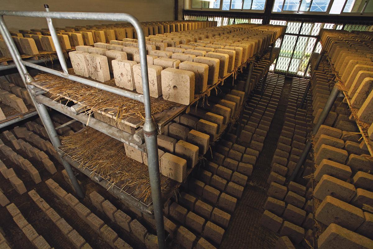眾多麴餅壯觀地排列在麴室中發酵,醞釀天地環境之氣。
