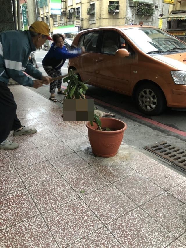 民眾持棍棒威嚇,企圖趕跑攻擊流浪狗的比特犬。(翻攝自《基隆人踹共》臉書)
