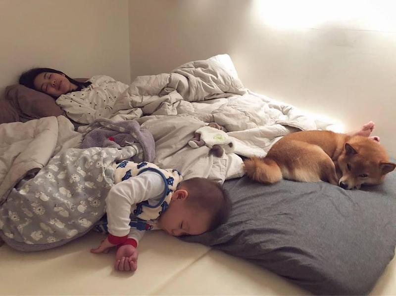 林可彤昨晚被老公拍下與小孩及狗女兒的睡相,她也來跟大家分享小孩獨立的看法。(翻攝自林可彤臉書)