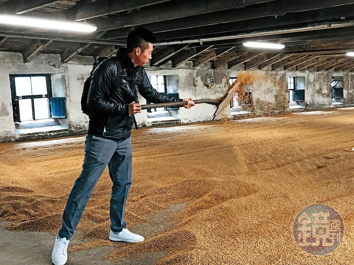 即將失傳的地板發麥,有機會讓我們親手體驗翻麥烘乾之感,豈能不來挑戰一下,但這絕對是件苦差事。