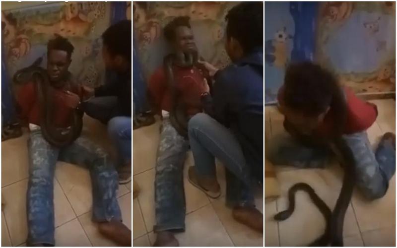 嫌犯脖子上被掛了巨蛇,害怕的扭動求饒。(翻攝自Lewis Prai Wellip Youtube)