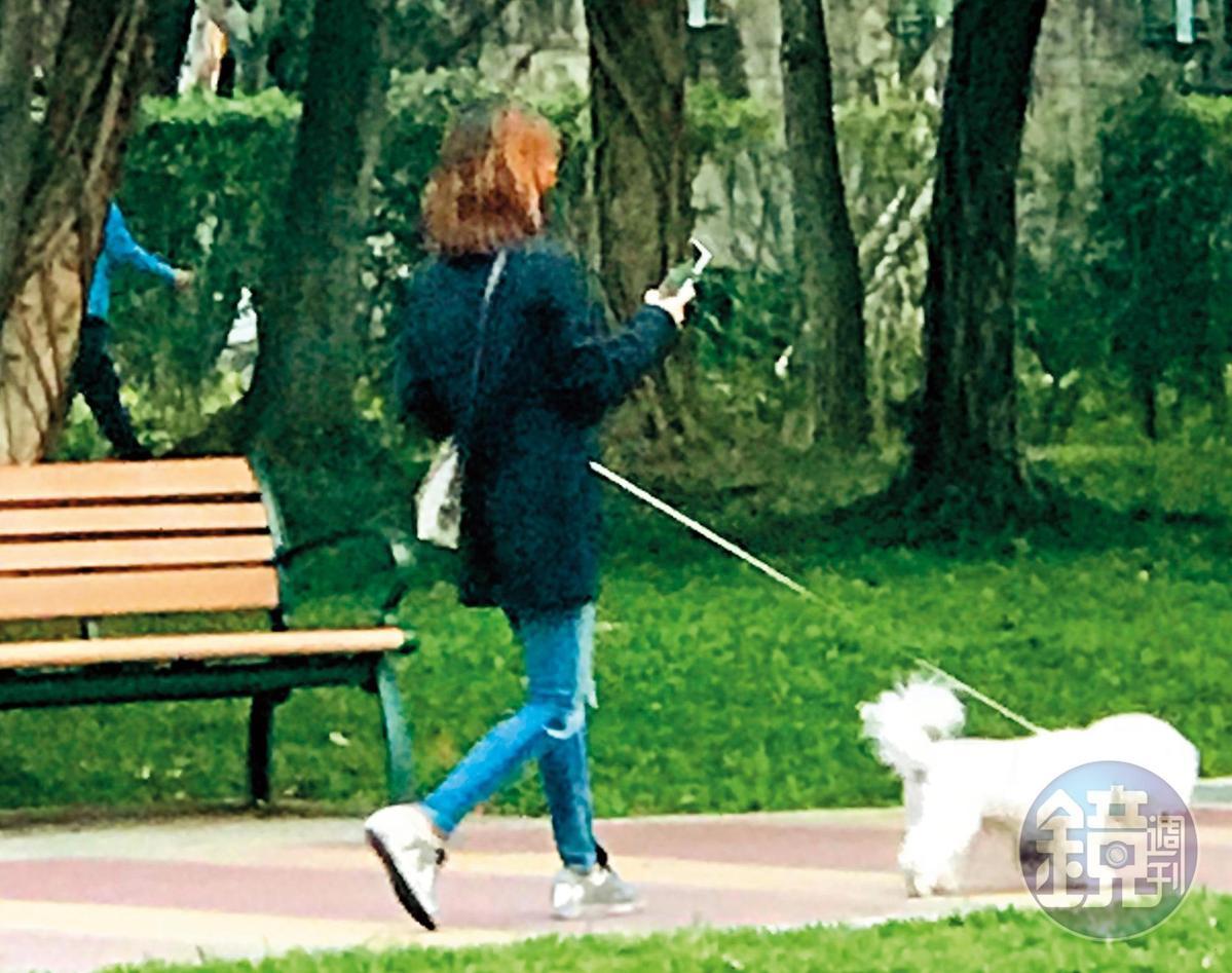 讀者提供Jolin一人遛狗的畫面,只是處女座「看似平靜的外表,內部其實很沸騰。」(讀者提供)