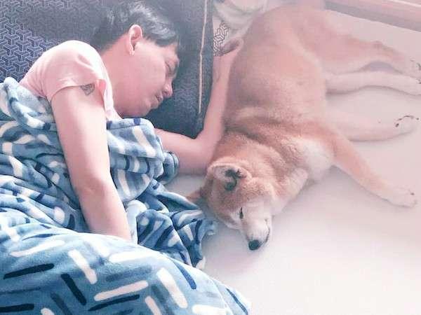元氣因為跳不上床,黃子佼索性每晚陪牠一起睡在地板上。(翻攝自黃子佼臉書)
