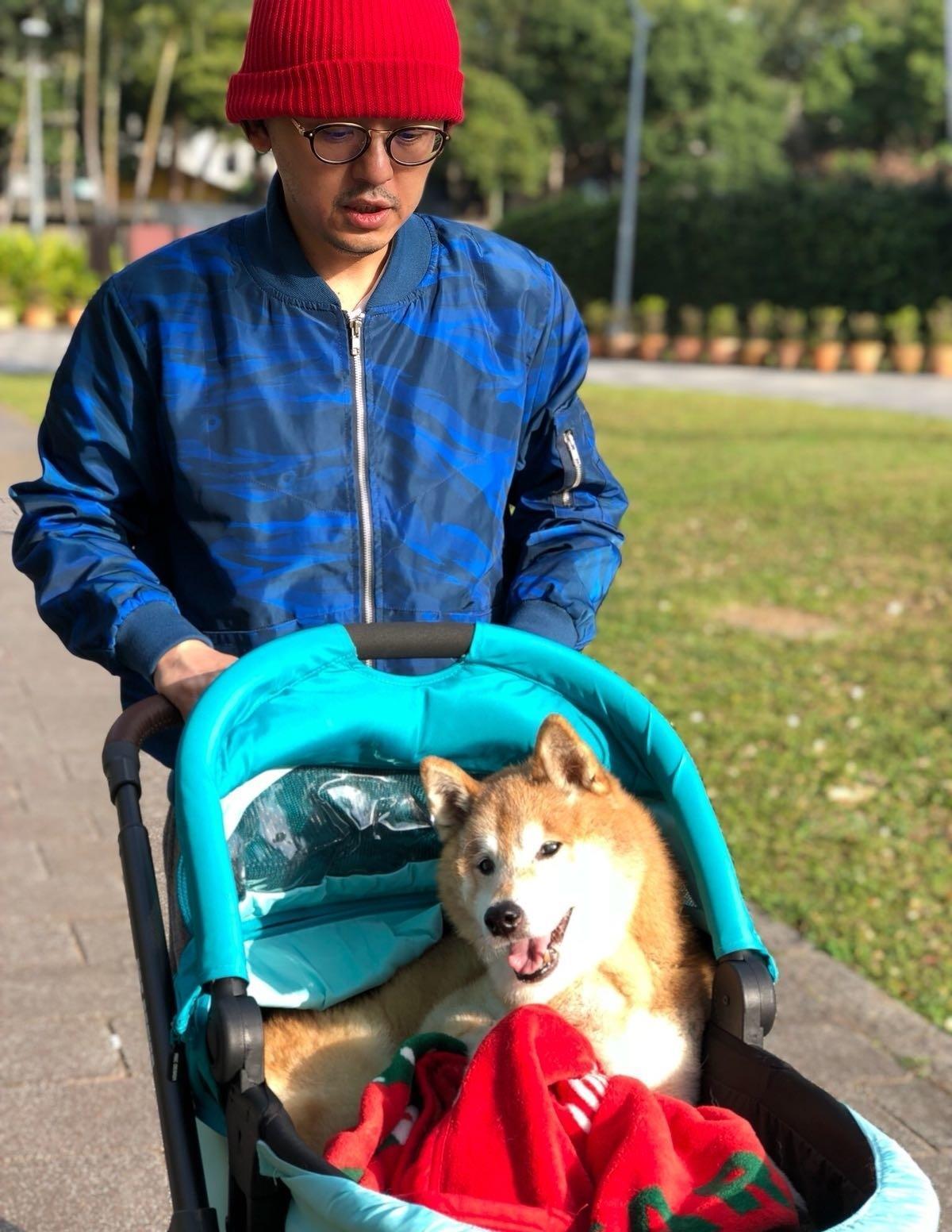 元氣老年時,黃子佼常推著娃娃車,帶牠出外散步。(翻攝自黃子佼臉書)