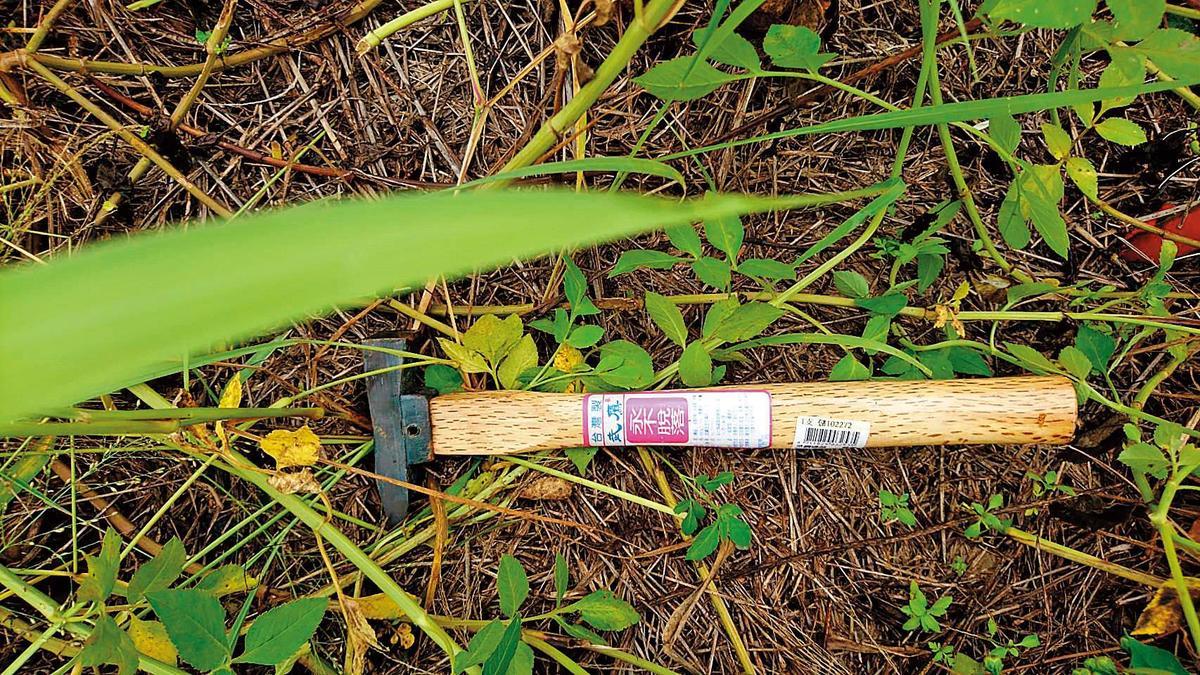 警方最後在草叢內找到林宗耀弒兄的鐵鎚等凶器。