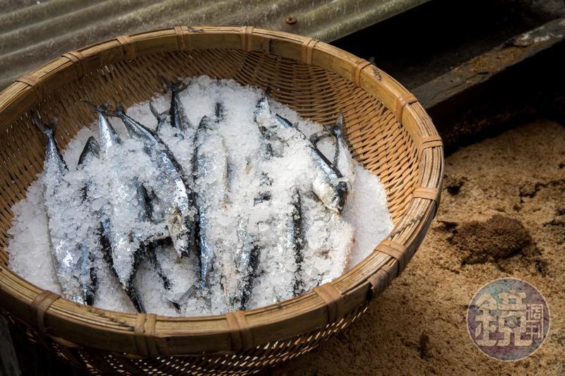 三重的「民星食品廠」使用新鮮沙丁魚或鯖魚製作魚露。