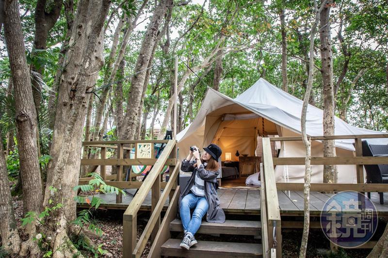 座落在森林中的豪華帳篷,與大自然和諧共存。