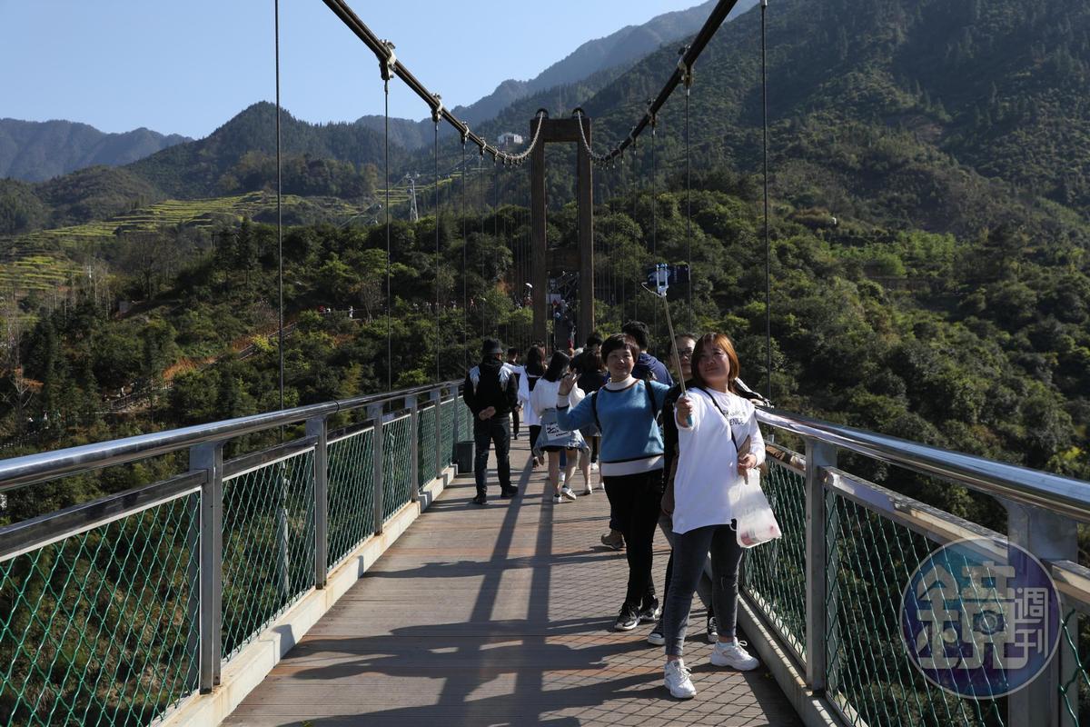 遊客一上橋,就忙著與美景自拍。
