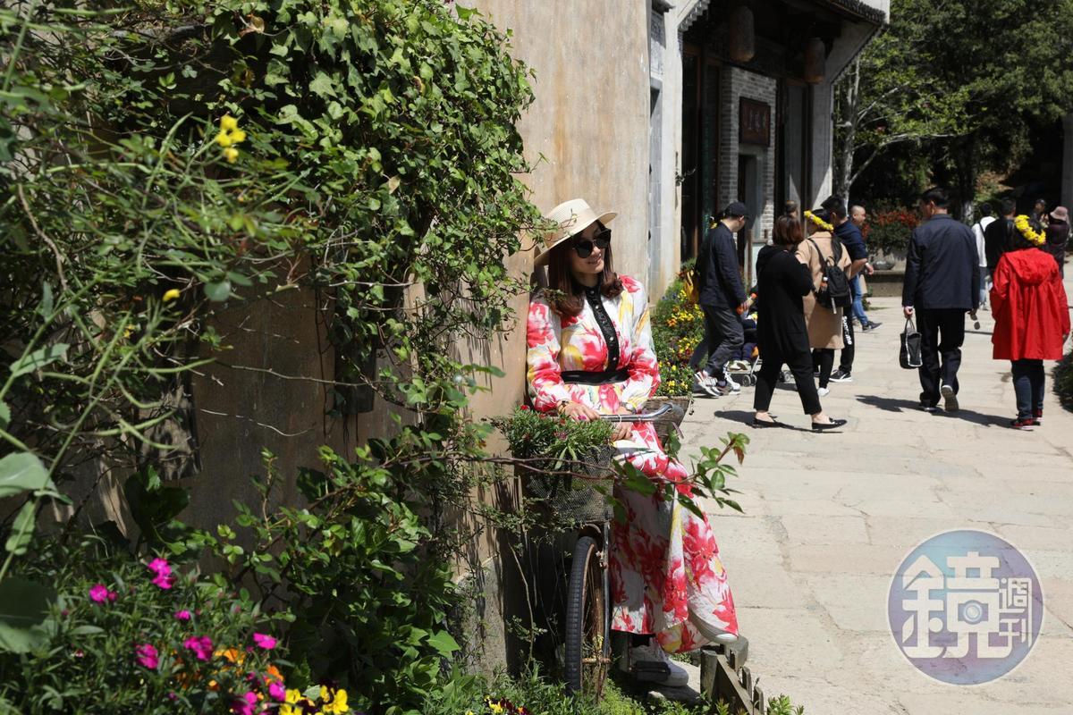 趁著春日出遊的旅客,與裝飾著油菜花的自行車合影。