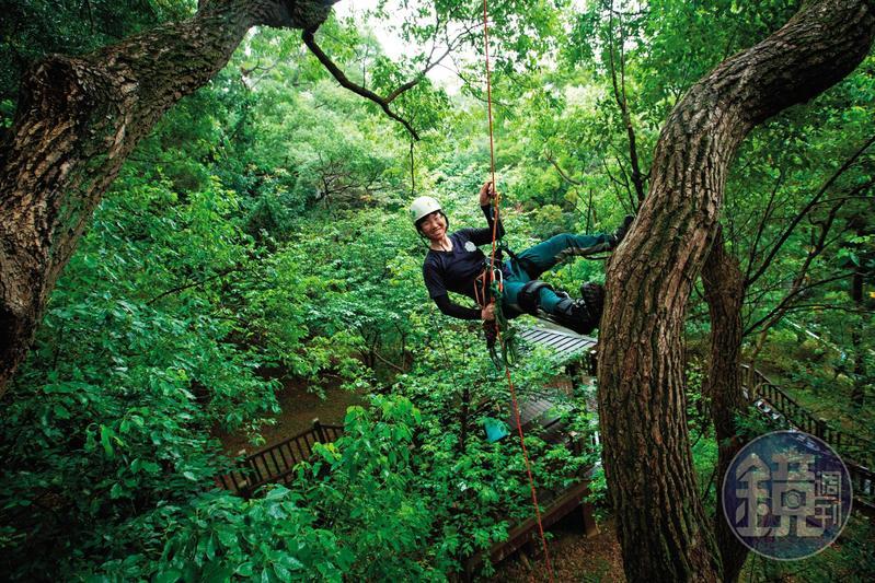 這天,陳雅得到新北市泰山辭修公園攀樹,這是攀樹同好進行技巧切磋的地方。